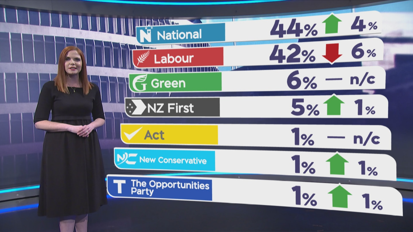 Party vote in the 1 NEWS Colmar Brunton Poll for June.