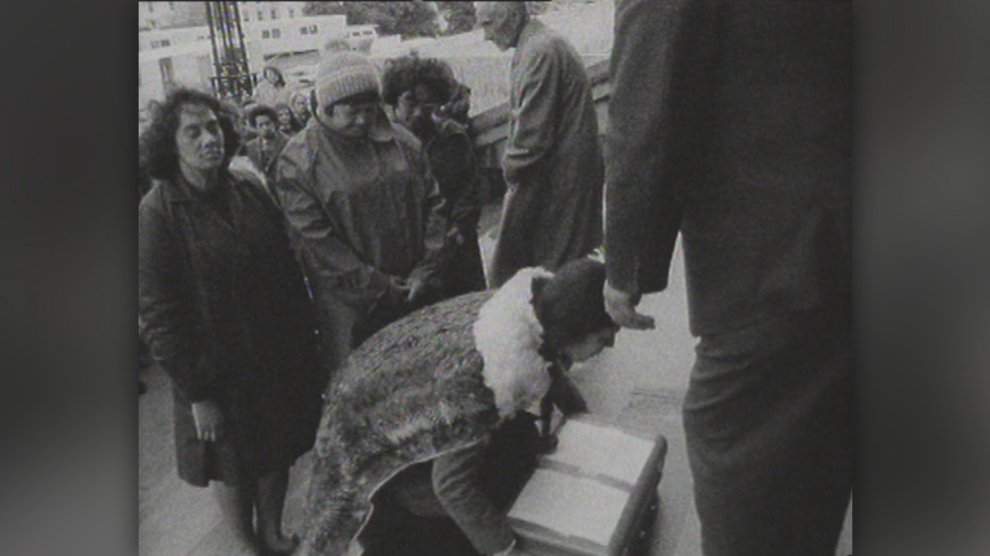 The te reo Māori petition is presented to Parliament in 1972.