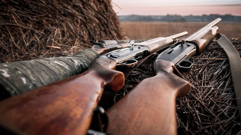 Hunting rifles.